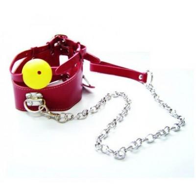 Collar & Ball Gag Bondage Gear Set