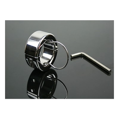 Testicle Bondage Gear Scrotum Pendant Scrotal BDSM Sex Toy Metal Stainless Steel