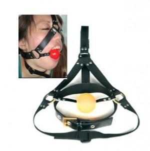 bondage gear mouth harness set.