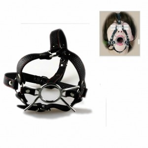 spider mouth gag, spider harness gag, spider head harness