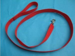 BDSM bondage leash.