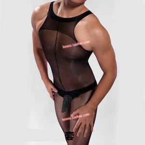 male pantyhose lingerie,male sheer lingerie,male body stockings