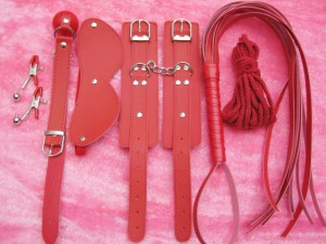 bondage gear kit.